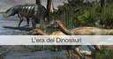 Studio Unife - MUSE sui fossili delle Dolomiti rivela come ebbe inizio. La ricerca su Nature Communications.
